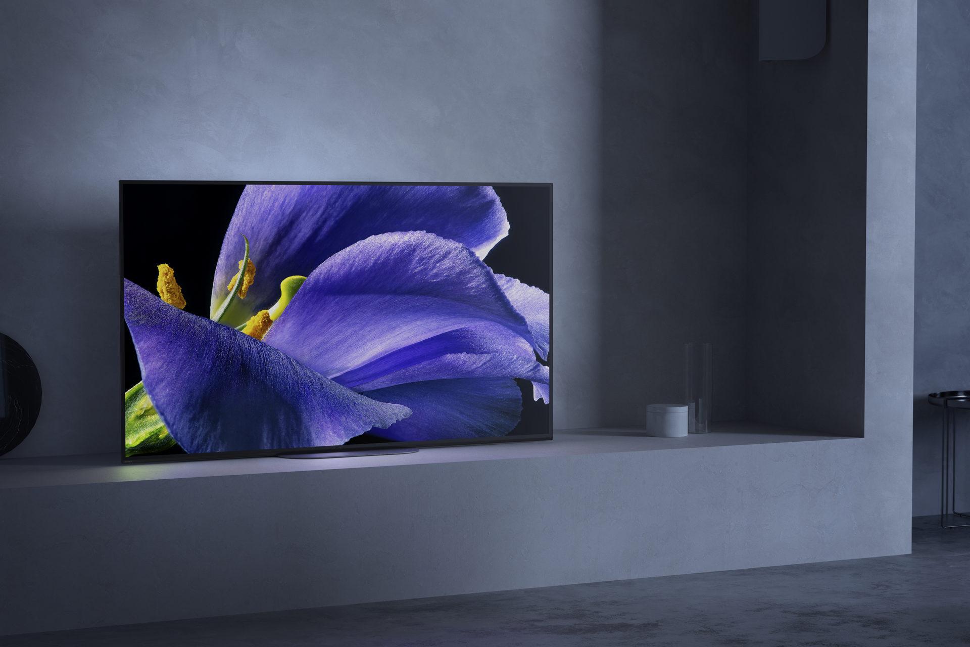 La tv Bravia di Sony