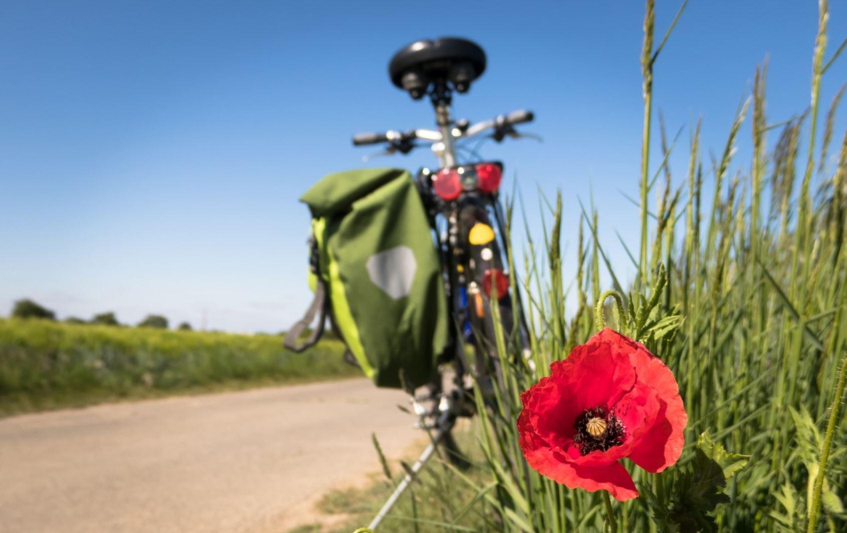 acquisto baratto biciclette