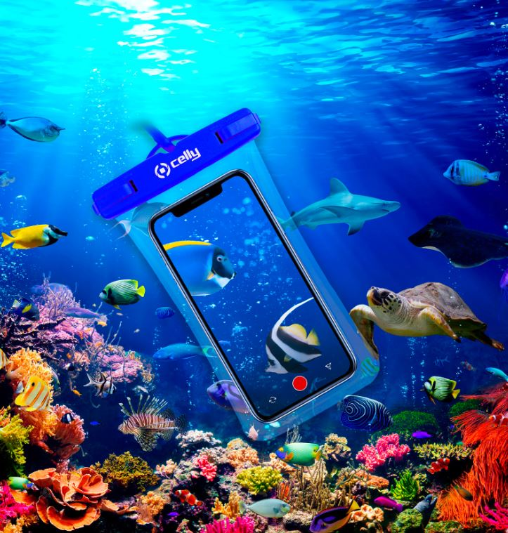 accessori smartphone estate