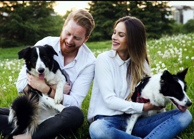 MeetMyPet, il social network degli animali domestici
